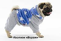 """Велюровый костюм """"Вираж""""  для собак, размеры  S-2, M-2, L"""