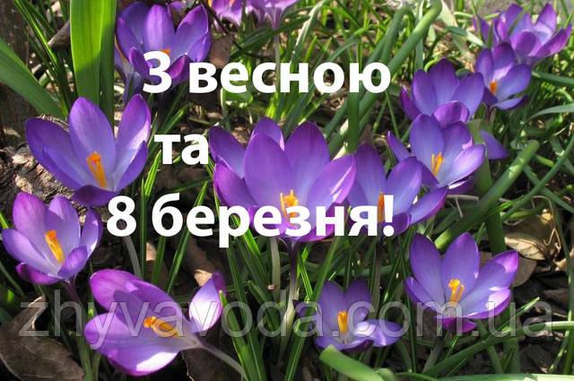 Вітаємо з весною та 8-м березня!