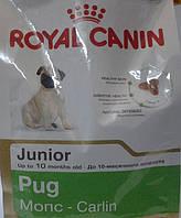 Корм для щенков - мопсов до 10 месяцев  Роял Канин Pug Junior 1,5кг
