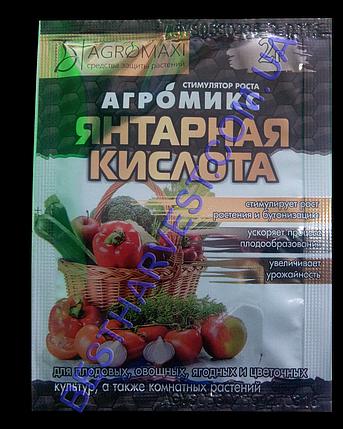 Янтарная кислота Агромикс 2 г, фото 2