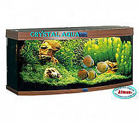 Овальный аквариум 70л с крышкой и лампами 1х10 Вт, Т8 + тумба