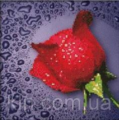 Комплект алмазной вышивки круглыми камнями Красная роза 22 х 22 см (арт. PR060) частичная выкладка
