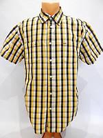 109КР Мужская рубашка с коротким рукавом MUCH MORE, фото 1
