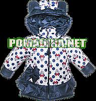 Детская весенняя, осенняя куртка р. 98 с капюшоном, подкладка 100% хлопок, внутри холлофайбер 3023 Белый