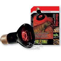Террариумная инфракрасная лампа ExoTerra Heat Glo 75 W (Hagen РТ 2142)