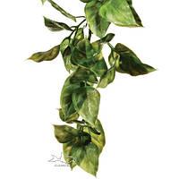 Растение для террариума амапалло среднее ExoTerra Amapallo medium (Hagen РТ 3011)