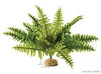 Растение для террариума нефролепис малый ExoTerra Boston Fern small (Hagen РТ 2990)