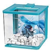 Аквариум для петушка Betta Kit EZ Care голубой 2,5 л