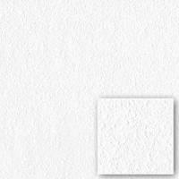Обои флизелиновые Sintra Rasch (под покраску)675700