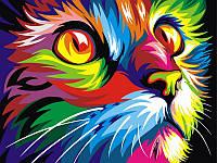 Картины по номерам 40×50 см. Радужный кот худ. Ваю Ромдони