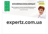 Перевірка податкових декларацій та підготовка до перевірок
