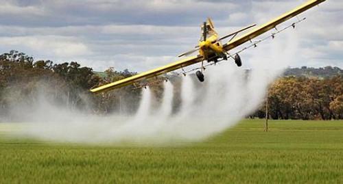 Прогноз развития мирового рынка пестицидов до 2019 года