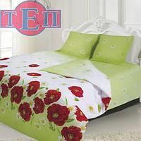 863 Алина (БЕСПЛАТНАЯ ДОСТАВКА) Полуторное постельное белье ТЕП