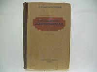 Шмальгаузен И.И. Проблемы дарвинизма (б/у)., фото 1