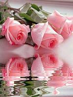 Алмазная вышивка Отражение роз в воде KLN 30 х 40 см (арт. FS072) полное заполнение