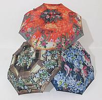 Женский зонт полуавтомат цветной