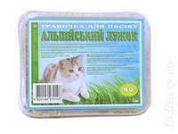 Травка для котов Альпийский лужок 80гр, минимальный заказ 5 шт