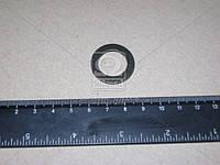 Шайба ступицы насоса водяного (ММЗ). 50-1005161