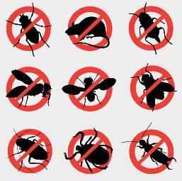 Засоби для боротьби з побутовими комахами і гризунами