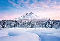 Фотообои бумажные на стену 366х254 см 8 листов: природа, Зимний пейзаж