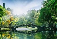 Фотообои бумажные на стену 366х254 см 8 листов:природа Мост в солнечных лучах