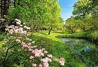 Фотообои бумажные на стену 366х254 см 8 листов:природа Парк весной
