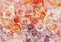 Фотообои бумажные на стену 366х254 см 8 листов: Цветы №147