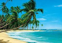 Фотообои бумажные на стену 366х254 см 8 листов: море, Тропический пляж