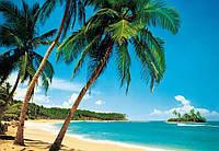 Фотообои бумажные на стену 366х254 см 8 листов: море, Тропический остров