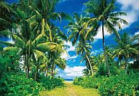 Фотообои бумажные на стену 366х254 см 8 листов: природа, Тропики №273