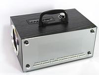 Мобильная колонка SPS RX 80  динамик, акустика, фото 3