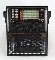 Пишущий DSP Радио-приемник MR-Q8REC USB/SD с пультом