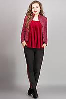 КОСТЮМ МИА ( КРАСНЫЙ), брючный, жакет прямой укороченный с принтом и прямые брюки с лампасами, 46-54 размер