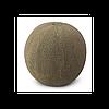 KS 7084 F1 - семена дыни тип Japanese, 1 000 семян, Kitano Seeds