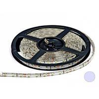 Светодиодная лента B-LED 24V 3528-60 W IP65 белая, герметичная, 1м