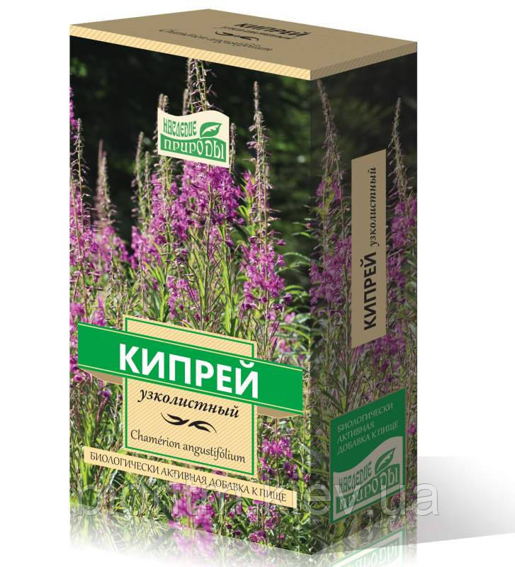 Иван-чай (кипрей), трава 50 г