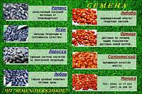 Приглашает к сотрудничеству по реализации семян