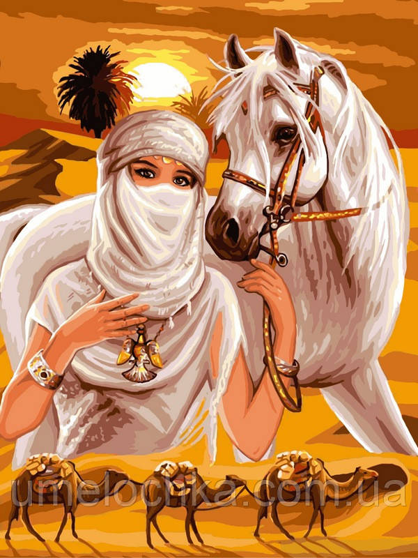 Картина по номерам Babylon Принцесса пустыни (VK009) 30 х 40 см