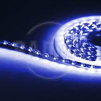 Гибкая светодиодная лента, SMD2835, цвет синий, 60 св./м, 4.8 Вт/м, влагозащищенная, M-TEK