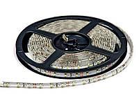 Светодиодная лента SMD 3528 (60 LED/m) IP54 Premium (для помещений с повышенной влажностью), фото 1