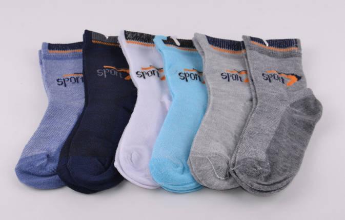 Детские носки на мальчика Спорт Золото р.20-23 (D3113/20-23) | 12 пар, фото 2