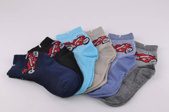 Детские носки на мальчика Золото р.20-23 (D3111/20-23) | 12 пар, фото 2
