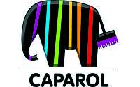 Цветовая палитра Caparol
