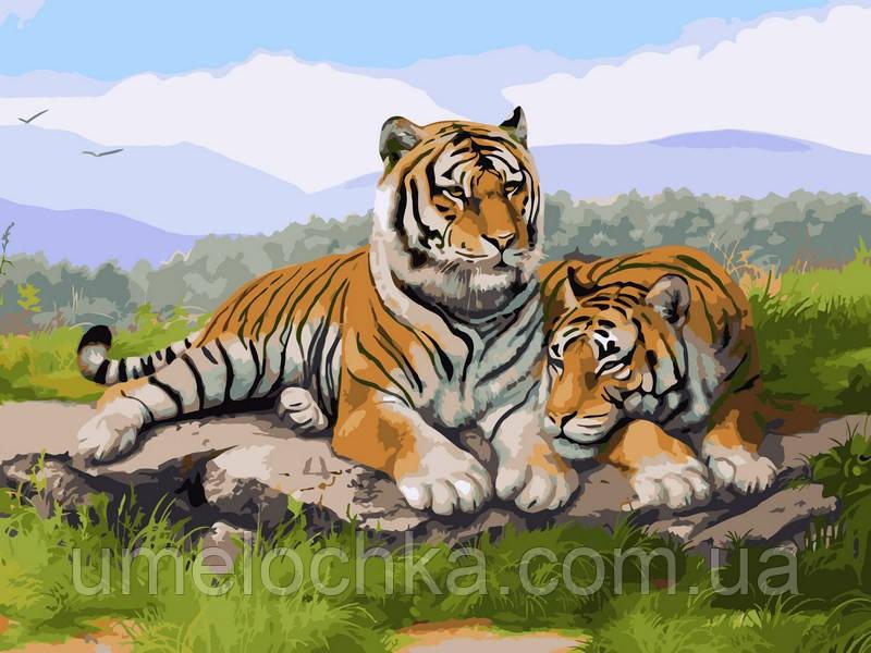 Картина по номерам Babylon Тигриное семейство (VK032) 30 х 40 см