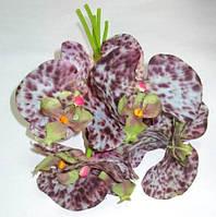 Букет орхидей/фаленопсисов