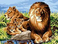 Картина по номерам Babylon Львиный прайд (VK101) 30 х 40 см
