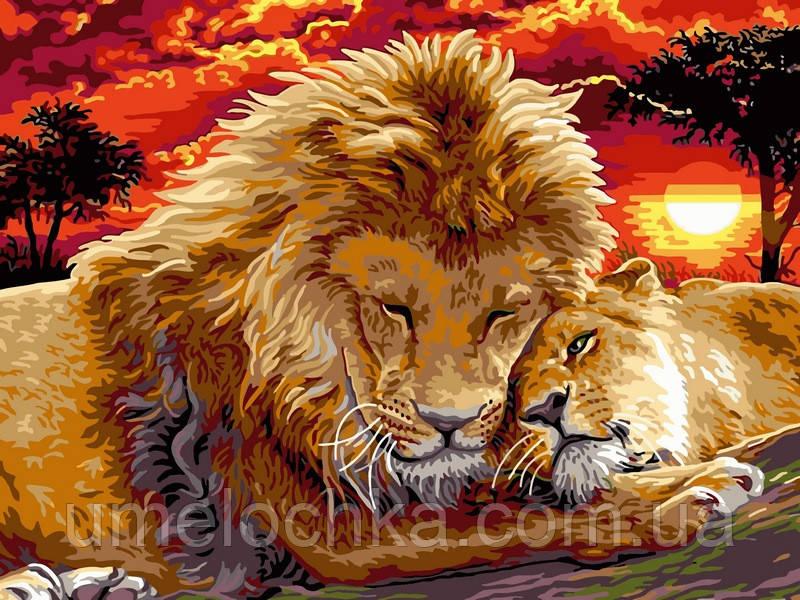 Картина по номерам Babylon Львиная нежность (VK102) 30 х 40 см