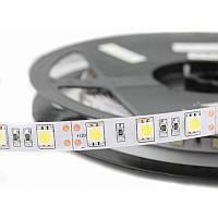 Светодиодная лента SMD 5050 (60 LED/m) IP20 Econom