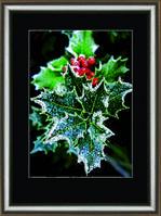 """Набор Crystal Art """"Зимние ягоды"""" для изготовления картины своими руками"""