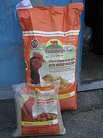 Комбикорм для молодняка  кур-несушек (9-17 недель) ТМ «Калинка»